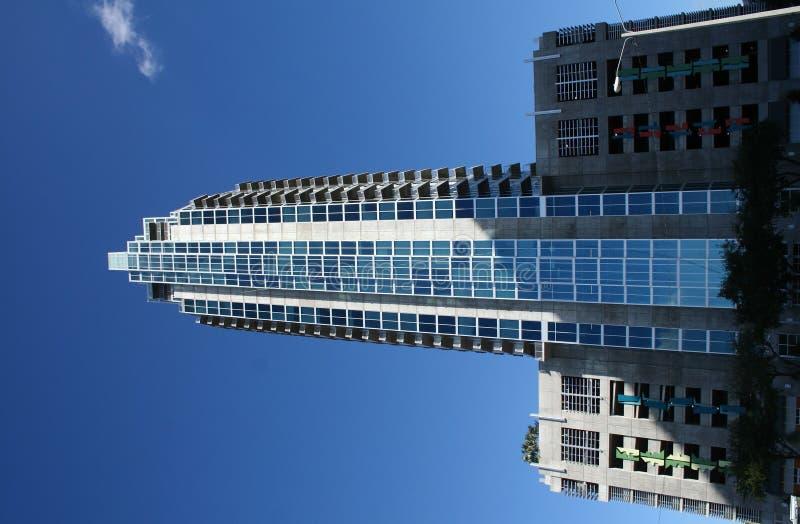 Tampa Highrise Royalty Free Stock Image