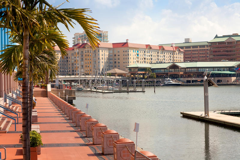 Tampa konventcentrum arkivbilder