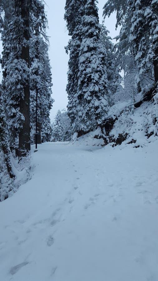 Tampa natural da casa da paisagem do murree de Paquistão Ásia da beleza da neve que aturde a fascinação fotos de stock royalty free