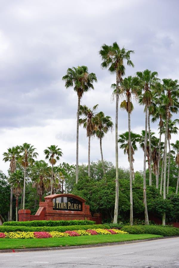 Tampa palm społeczność zdjęcie royalty free