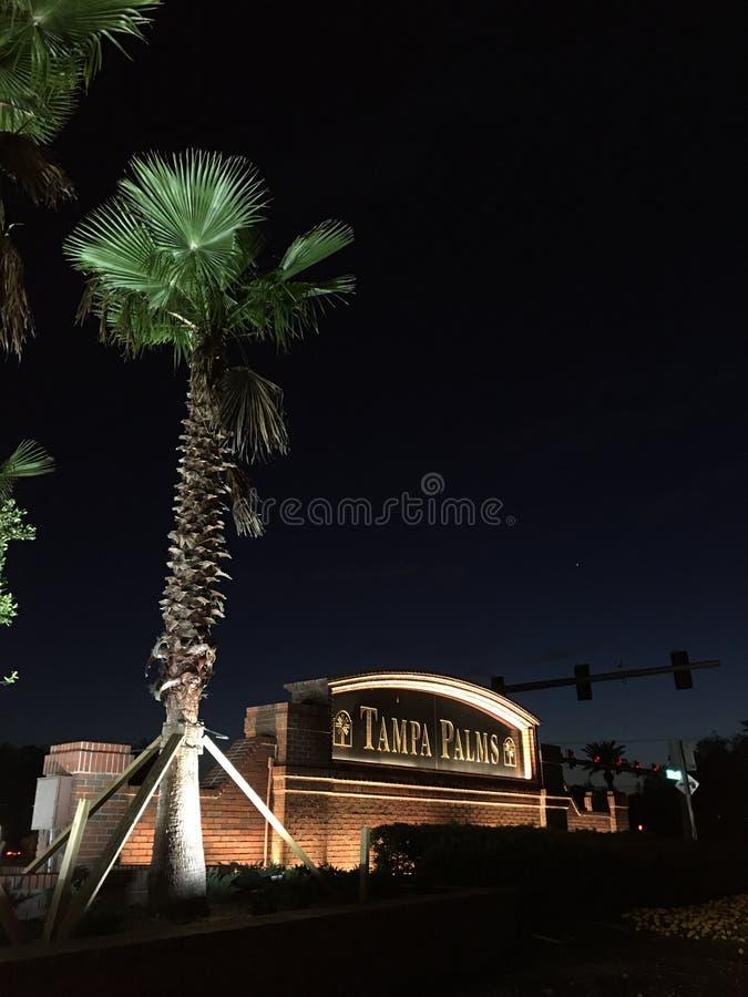 Tampa palm społeczność zdjęcie stock