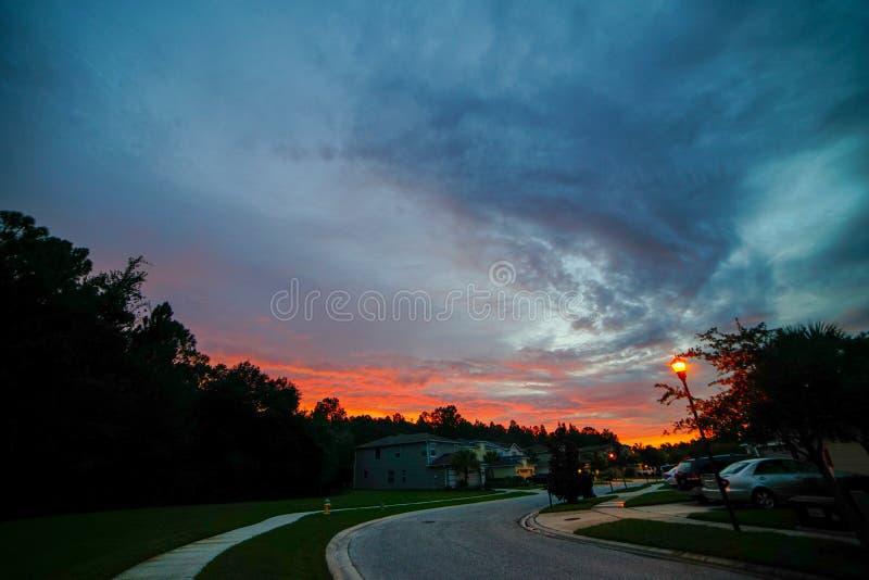 Tampa palm Tuscany społeczności słońca set fotografia stock