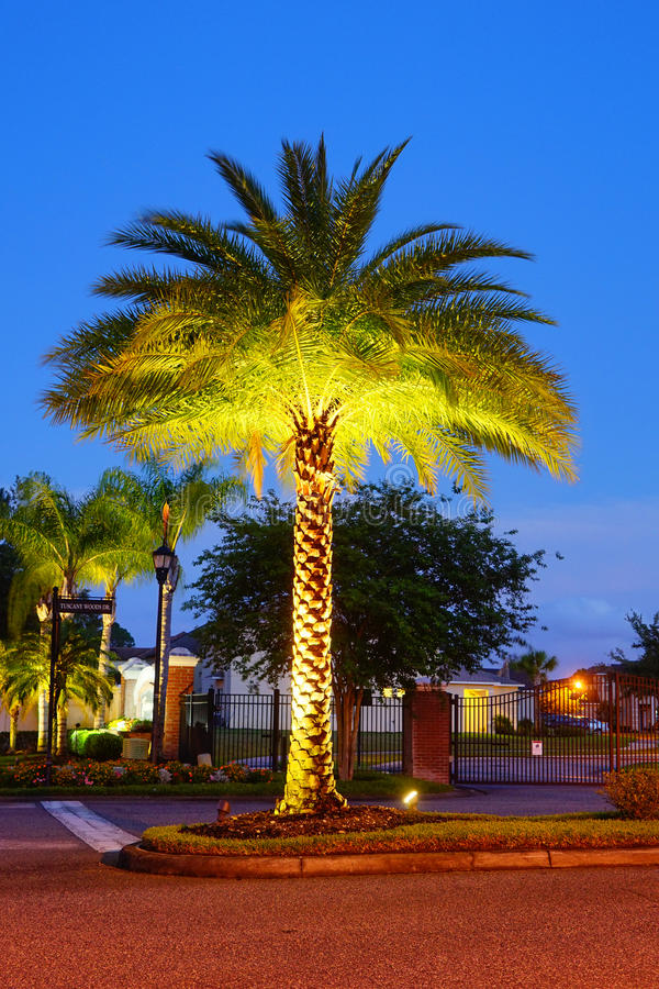 Tampa palms community. At sun set, taken in Tampa, florida stock photo