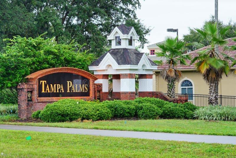 Tampa palmy społeczność obraz royalty free