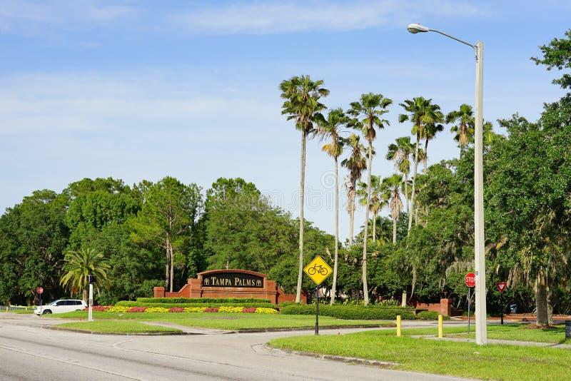 Tampa palmy wejście obraz royalty free