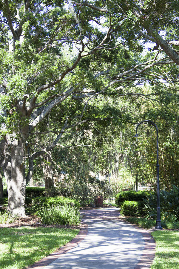 Tampa-Park stockfoto