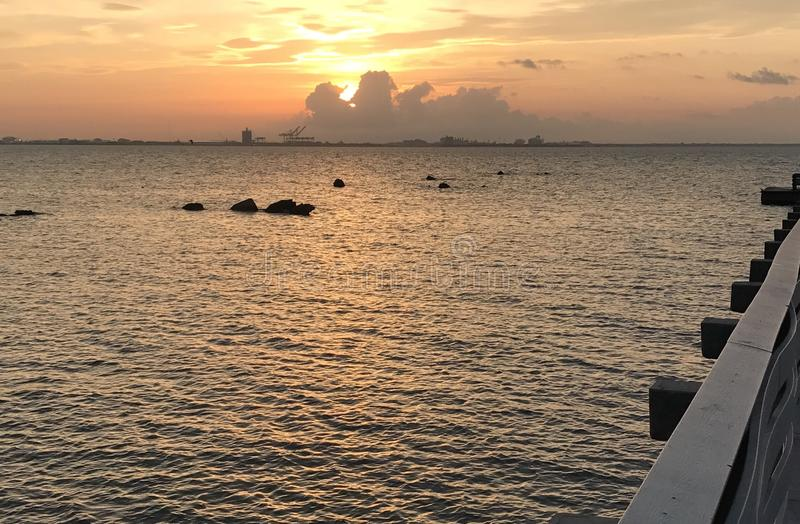 Tampa sunrise. Ballast point park stock image