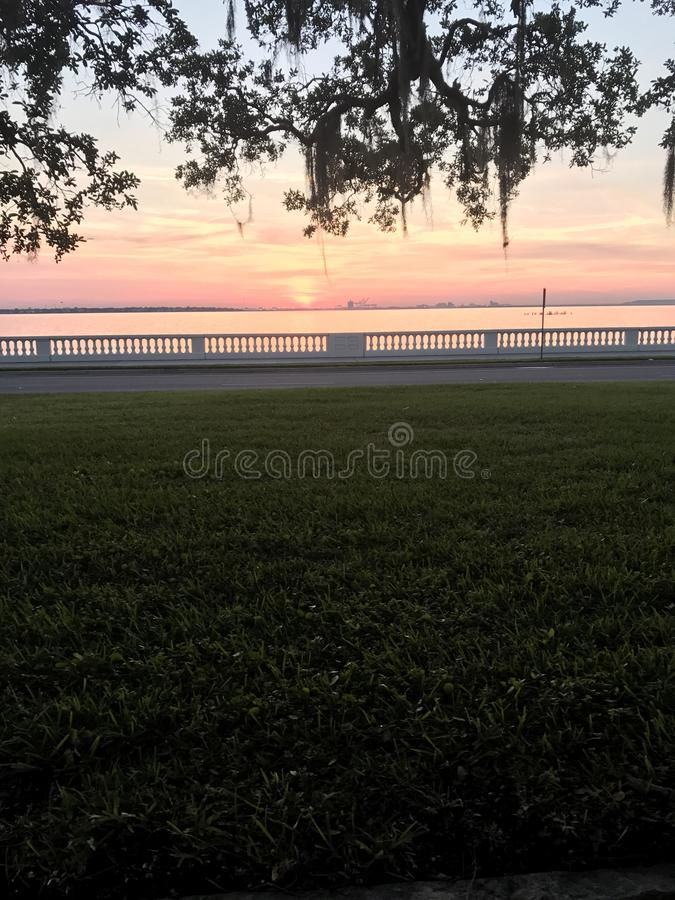 Tampa sunrise. Ballast point park royalty free stock images
