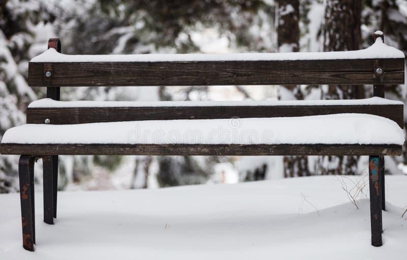 Tampas de neve brancas um banco de madeira vazio Natureza com fundo congelado borrado das árvores vista honesto próxima imagem de stock