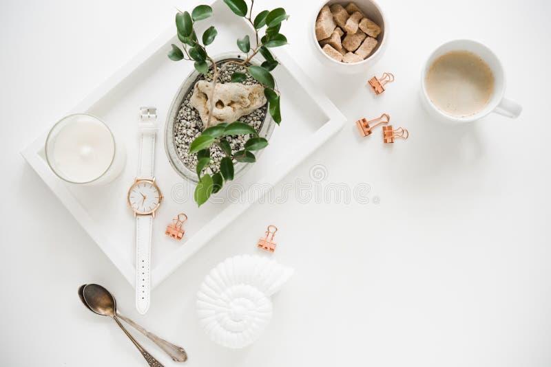 Tampo da mesa branco à moda, configuração lisa dos meios sociais com plantas fotos de stock