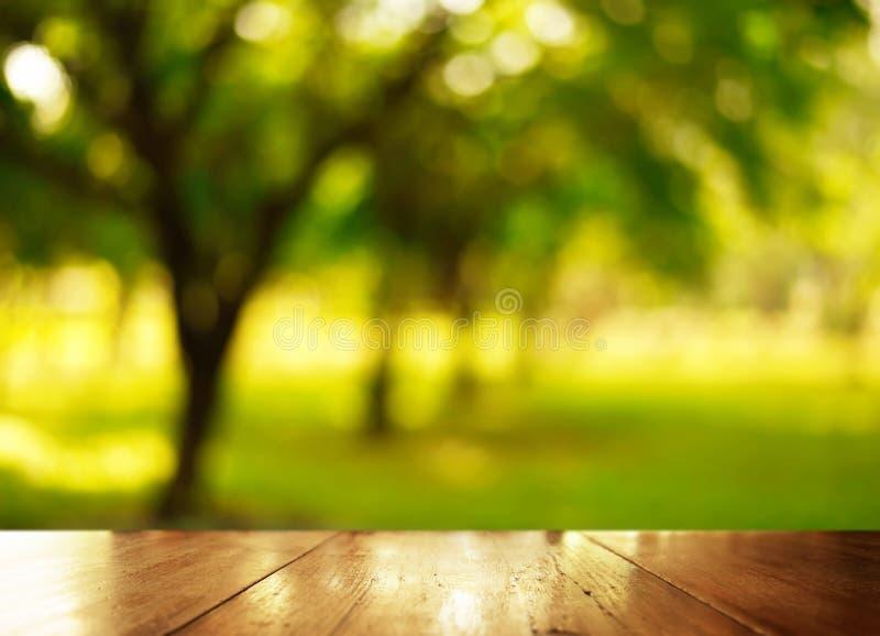 Tampo da mesa de madeira com o ttree do verde do borrão no fundo do jardim imagens de stock