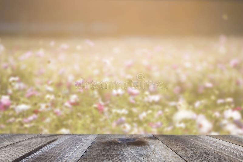 Tampo da mesa de madeira e fundo borrado das flores Fundo da mola imagem de stock royalty free