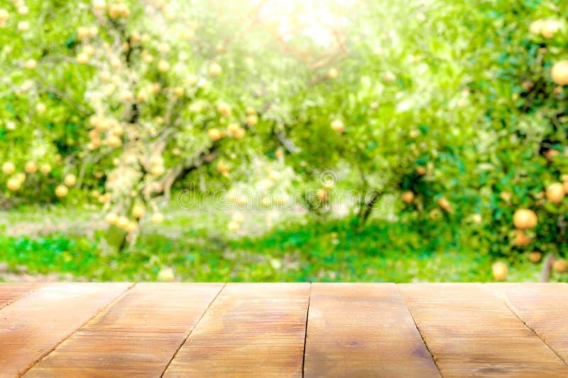 Tampo da mesa de madeira na luz solar brilhante com borrão do jardim alaranjado em t fotos de stock royalty free