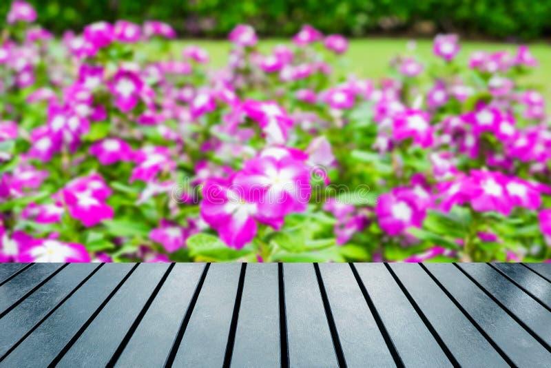 Tampo da mesa de madeira no agrião borrado, arbusto da flor do vinca imagens de stock royalty free
