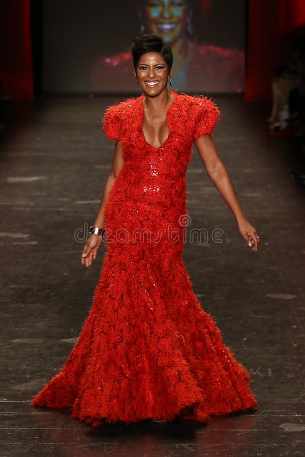 Tamron Hall. NEW YORK-FEB 11: Tamron Hall wears Marc Bouwer at Go Red for Women Red Dress Collection 2016 Presented by Macy's at New York Fashion Week on royalty free stock images