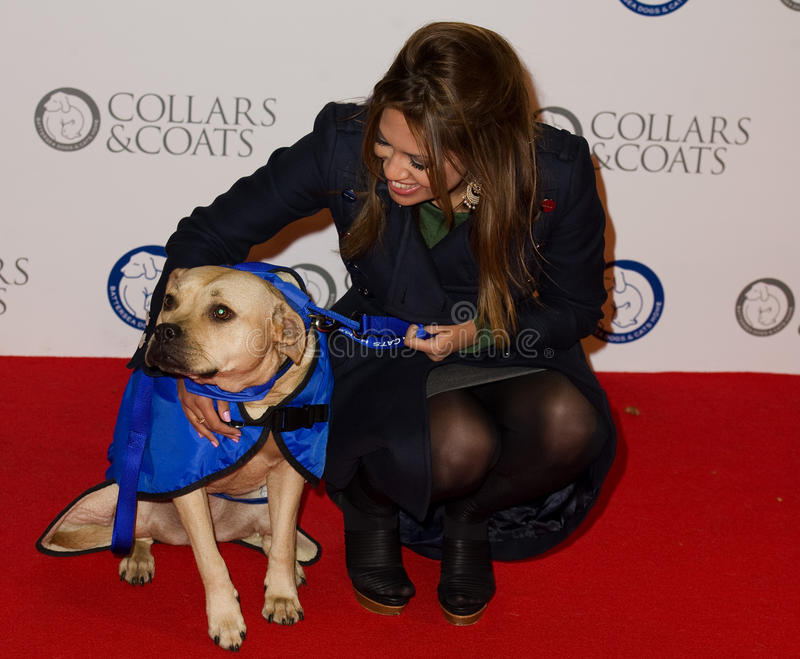 Tamsin Khan. At Battersea Evolution for the 2011 Collars & Coats Ball on behalf of the Battersea Dogs Home. London 11th Nov 2011 Pics by Simon Burchell / stock photo