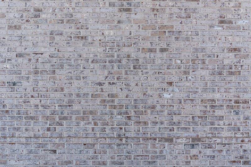 Tan Brick Wall Texture royalty-vrije stock fotografie