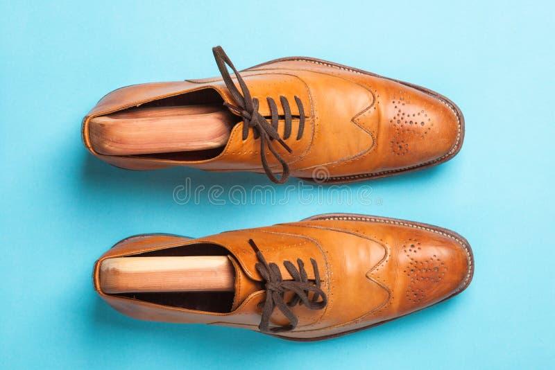 Tan modieuze mannelijke brogue schoenen stock fotografie