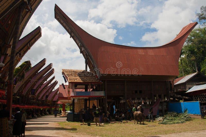 Tana的Toraja,印度尼西亚一个传统村庄 库存图片