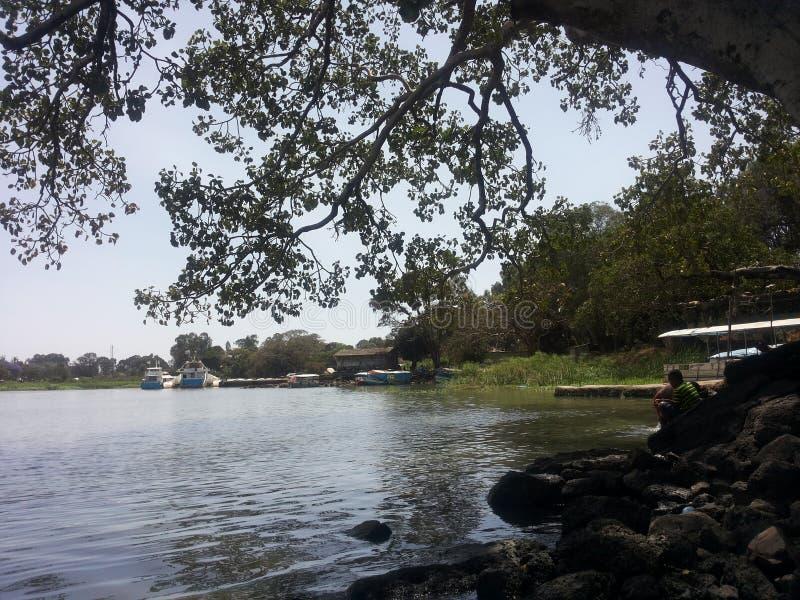 Tana lake 3 royalty free stock photography