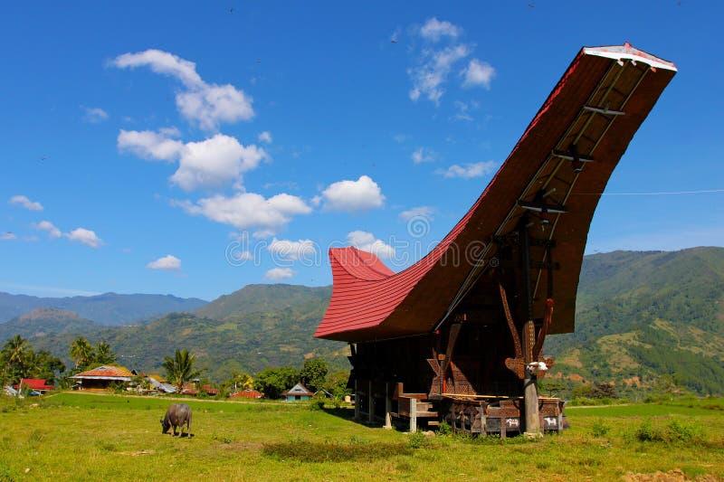 Tana Toraja, Sulawesi, Indonesië stock afbeelding