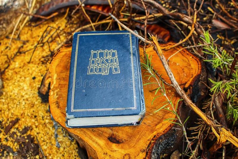 Tanakh, hebräische Bibel Torah, Neviim, Ketuvim Jüdisches Buch, kanonische Sammlung jüdische Texte israel lizenzfreies stockfoto
