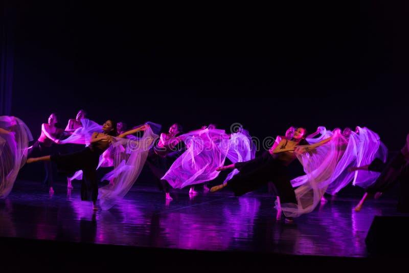 Tanczyć w skołatanych czasach 3--Tana dramata osioł dostaje wodnym zdjęcie royalty free