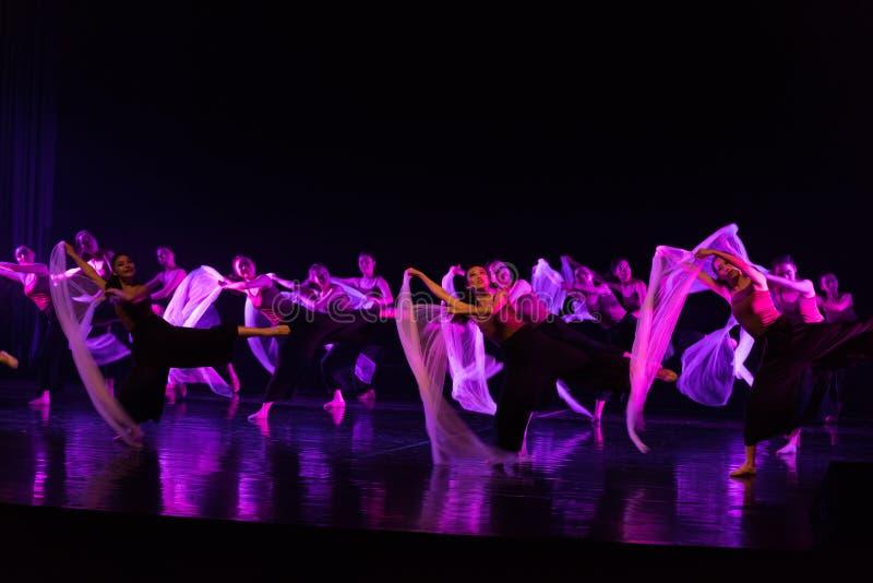 Tanczyć w skołatanych czasach 4--Tana dramata osioł dostaje wodnym obraz royalty free