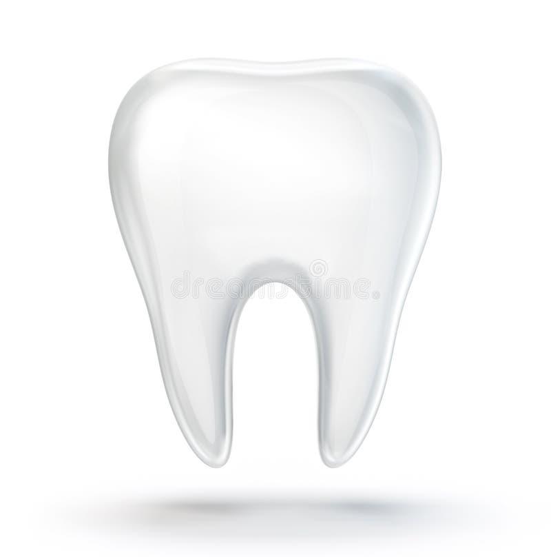 tand vector illustratie