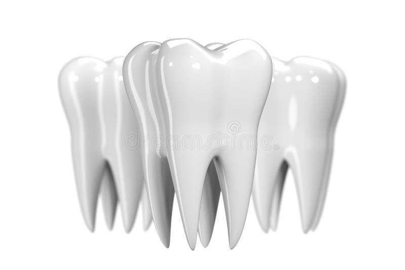 Tand die op witte achtergrond wordt geïsoleerd De gezonde 3d illustratie van het tandenpictogram van witte email en wortel E vector illustratie