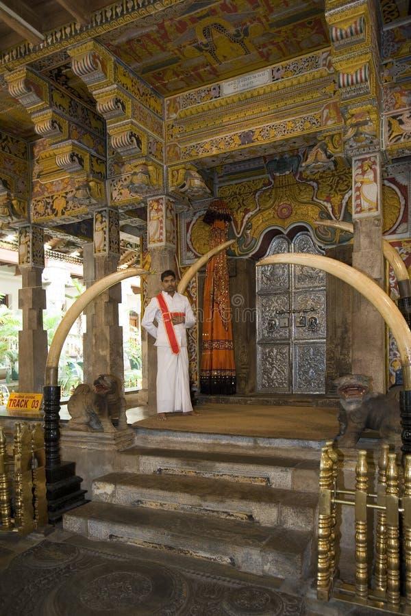 tand för tempel för kandy lankasri royaltyfri bild