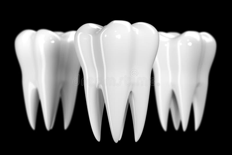 Tand op zwarte achtergrond wordt geïsoleerd die De gezonde witte 3d illustratie van het tandenpictogram van email en wortel E vector illustratie
