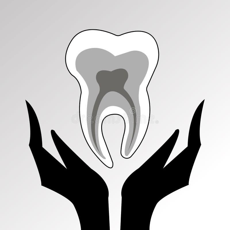 Tand- rengöring för medicin för hygien för illustration för tandläkaretandvektor stock illustrationer