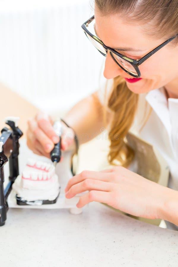 Tand- tekniker producera tandprotesen royaltyfria bilder