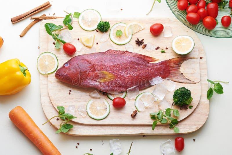 Tandbaarsvissen met ingrediënten stock fotografie
