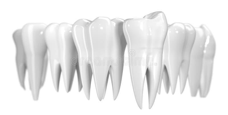 Tandbaner som isoleras på vit bakgrund Sund illustration för tandsymbol 3d av vit emalj och att rota Tandläkekonsthälsa stock illustrationer