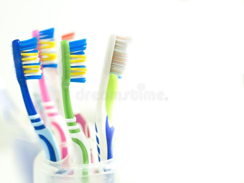 Tandborstar i badrummet Familjborstar och vit bakgrund som används av familjemedlemmar arkivbilder