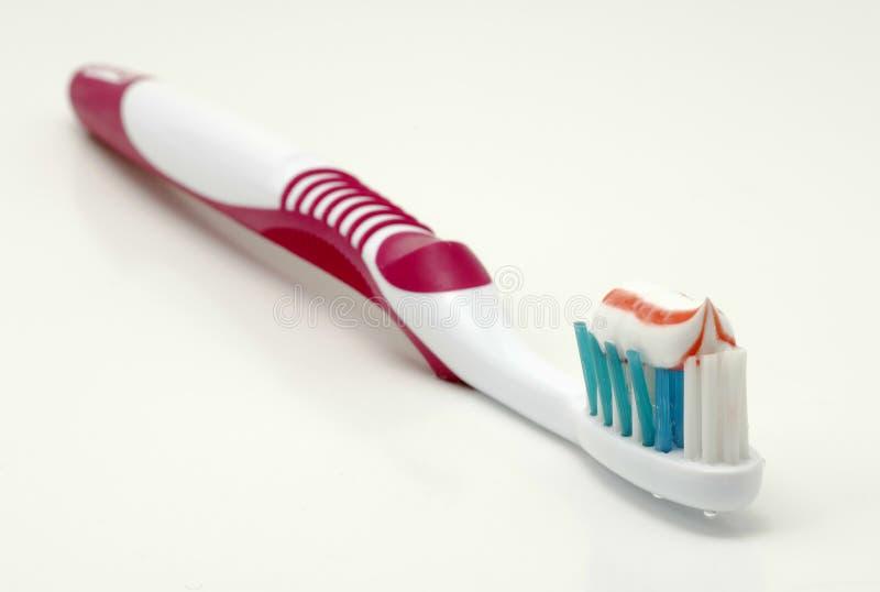 tandborste royaltyfria bilder