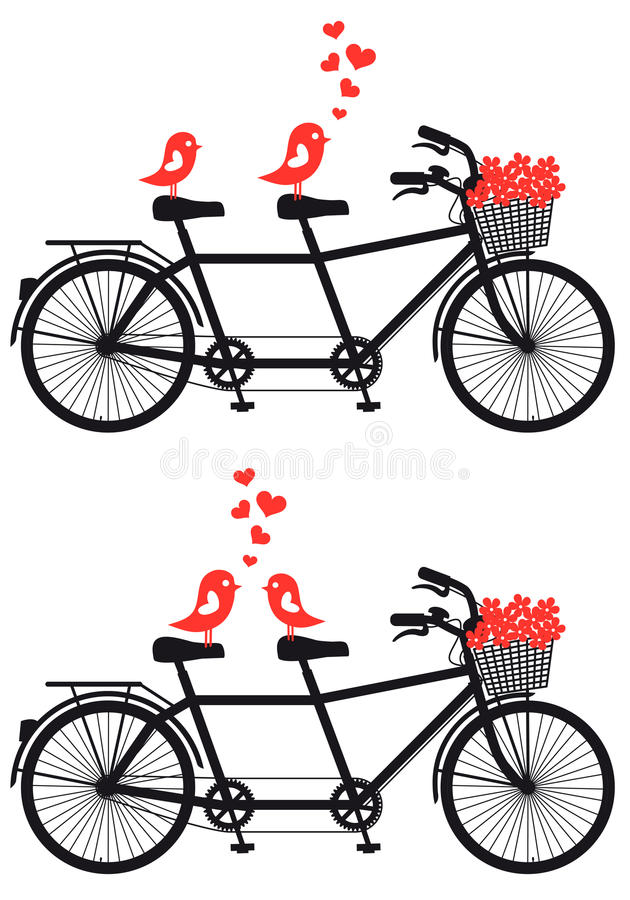Free Tandem Bicycle With Love Birds, Vector Royalty Free Stock Photo - 29169365