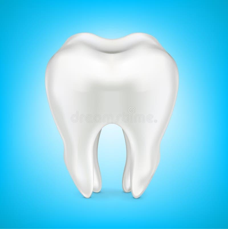 Tanden i rengöring shinny blå bakgrund som isoleras på vit vektor illustrationer