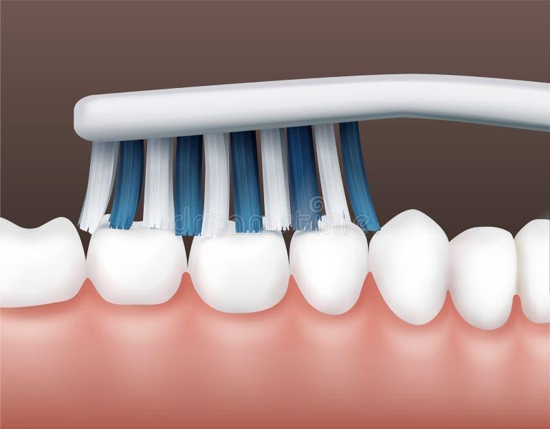 Tanden met tandenborstel stock illustratie