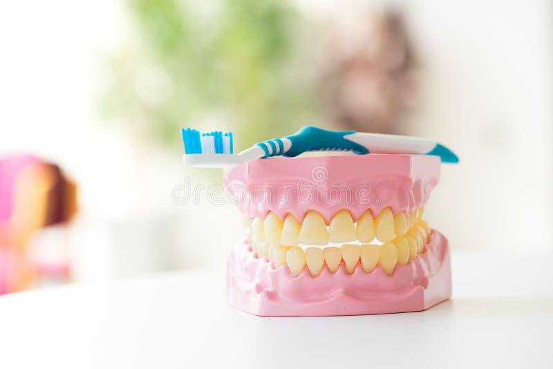 Tandenborstel voor tandzorg wordt geplaatst die royalty-vrije stock fotografie