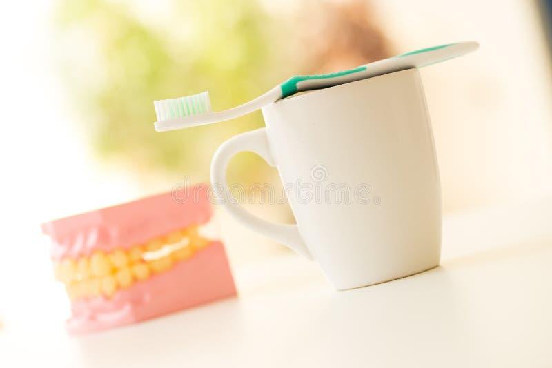 Tandenborstel voor tandzorg wordt geplaatst die stock foto's