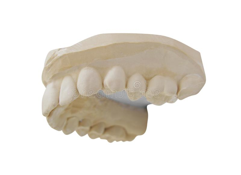 Tandenvorm op wit wordt geïsoleerd dat stock afbeeldingen