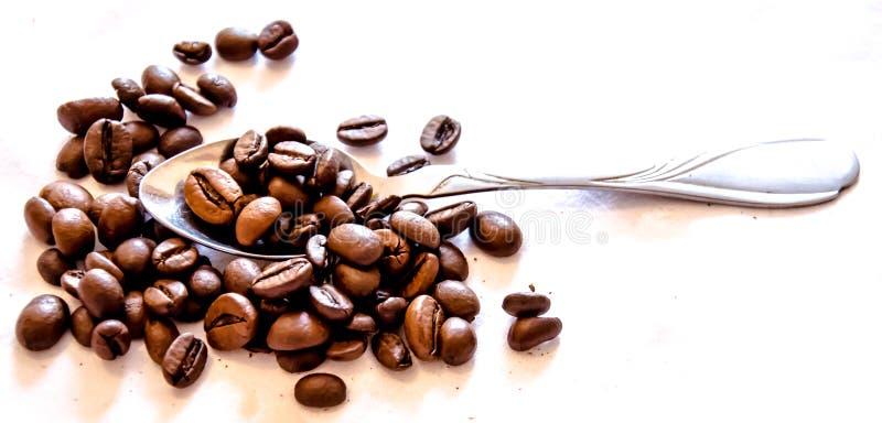 Tandis que café potable image libre de droits