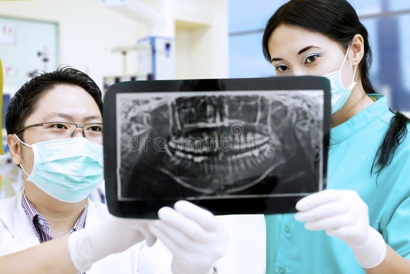 Tandläkare och assistent som analyserar röntgenstrålen på den tand- kliniken royaltyfri fotografi