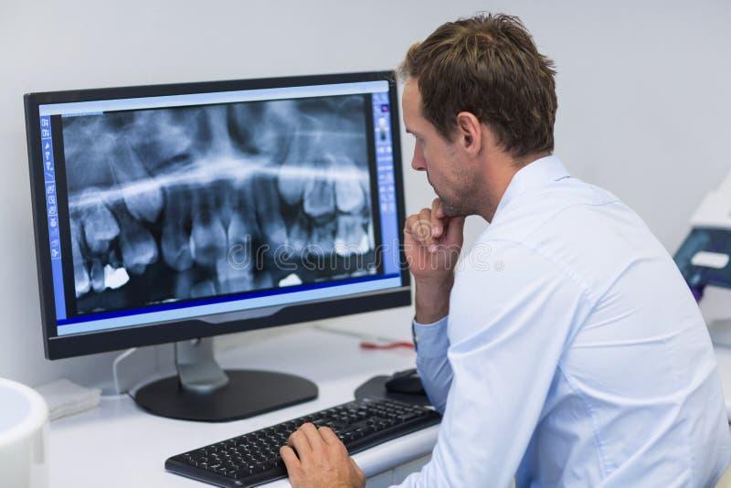 Tandläkare som undersöker en röntgenstråle på datoren i tand- klinik royaltyfria bilder