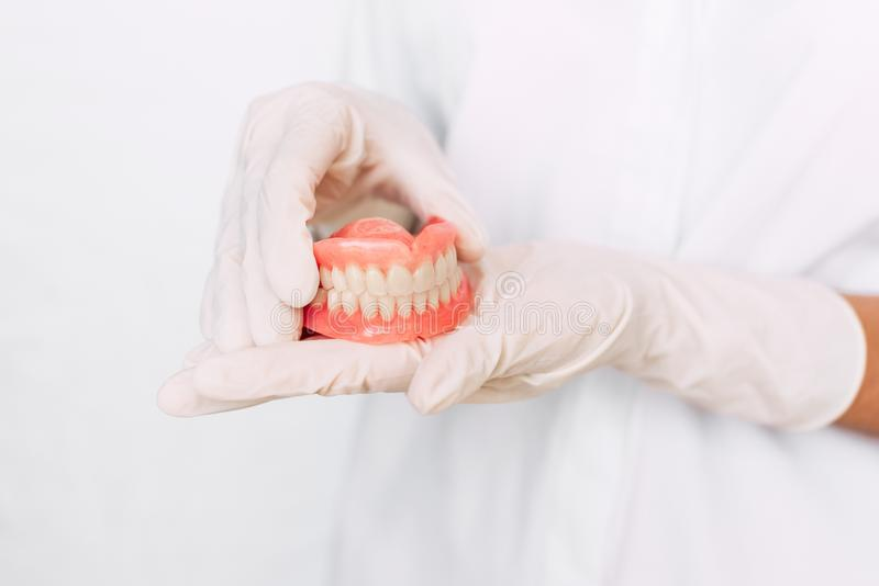 Tandprothese in de handen van het artsenclose-up Tandarts die ceramische tandbrug houden Vooraanzicht van volledig gebit royalty-vrije stock afbeeldingen