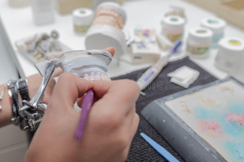 Tandtechnicus die aan het model van de pleistersteen met zirconiumbrug en het toepassen van ceramisch werken stock afbeeldingen