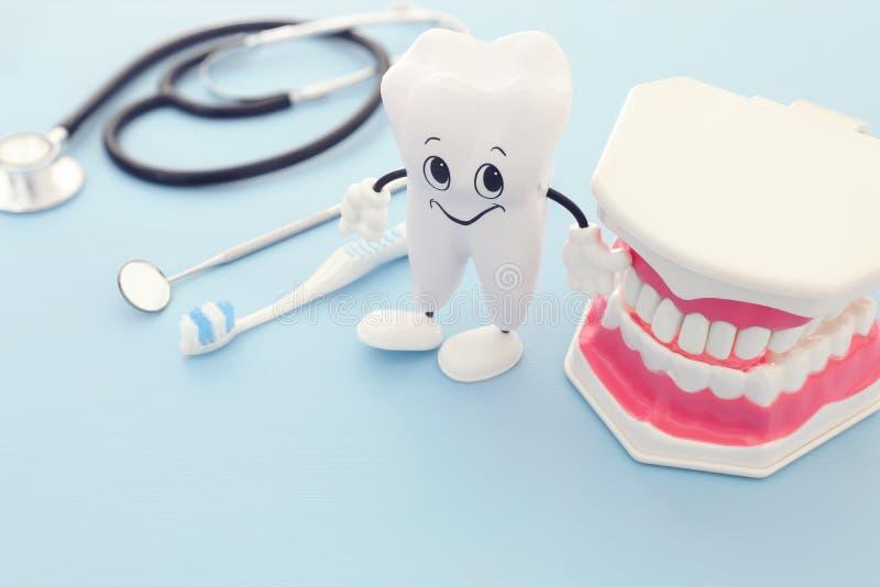Tandvårdhjälpmedel använder för tandläkaren, lyckliga sunda tänder, och plast- tänder modellerar i kliniken Träblå bakgrund arkivfoton